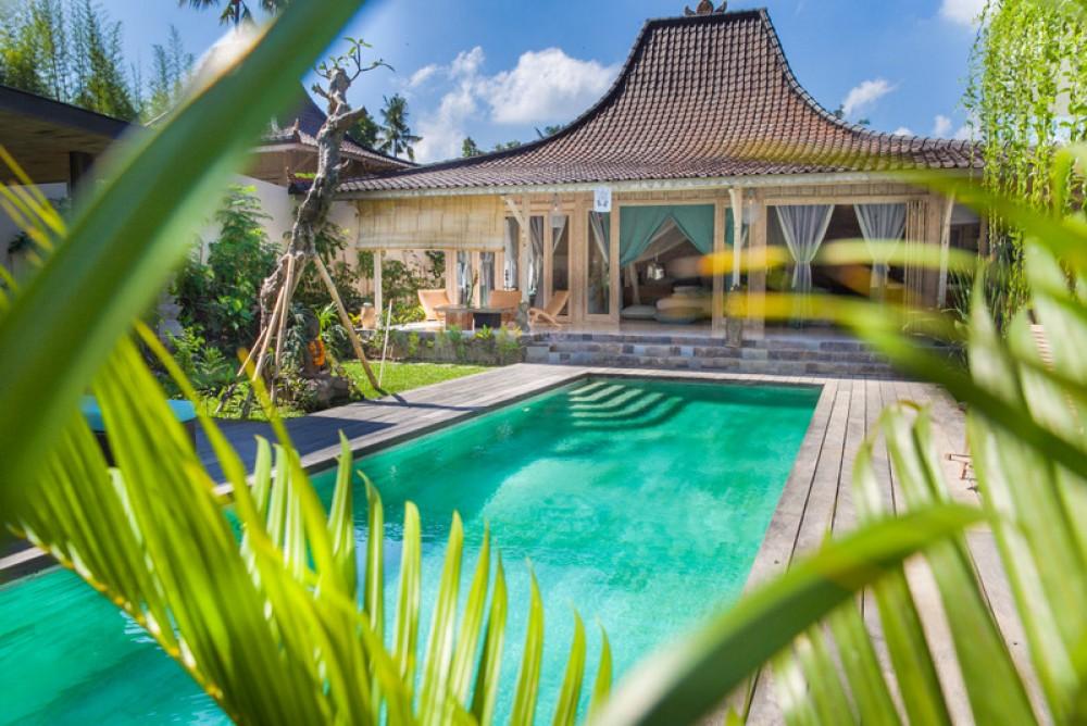 Private villa Bali with amazing swimming pool
