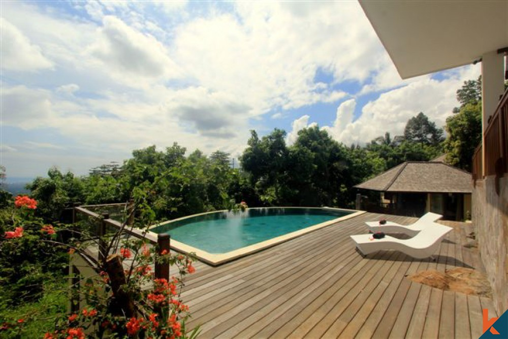 Villa Lovina Bali
