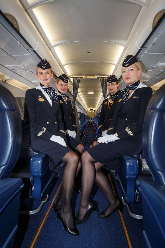 flight attendant's job